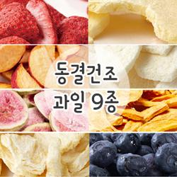 동결건조 과일 8종